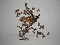 Niete 4  X 10 mm Bremsbelagnieten